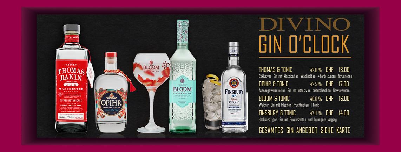 DIVINO GIN SELECTION